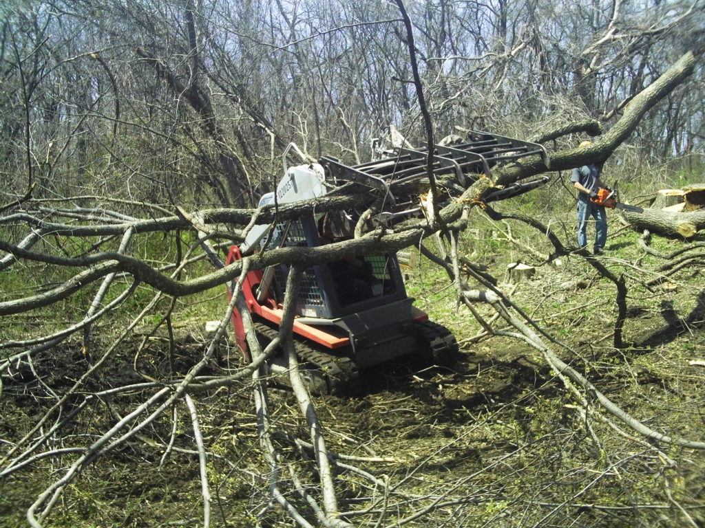 Takeuchi grappling & removing long branches