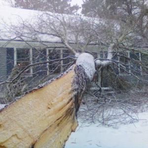 Emergency service - tree fallen on house in winter storm