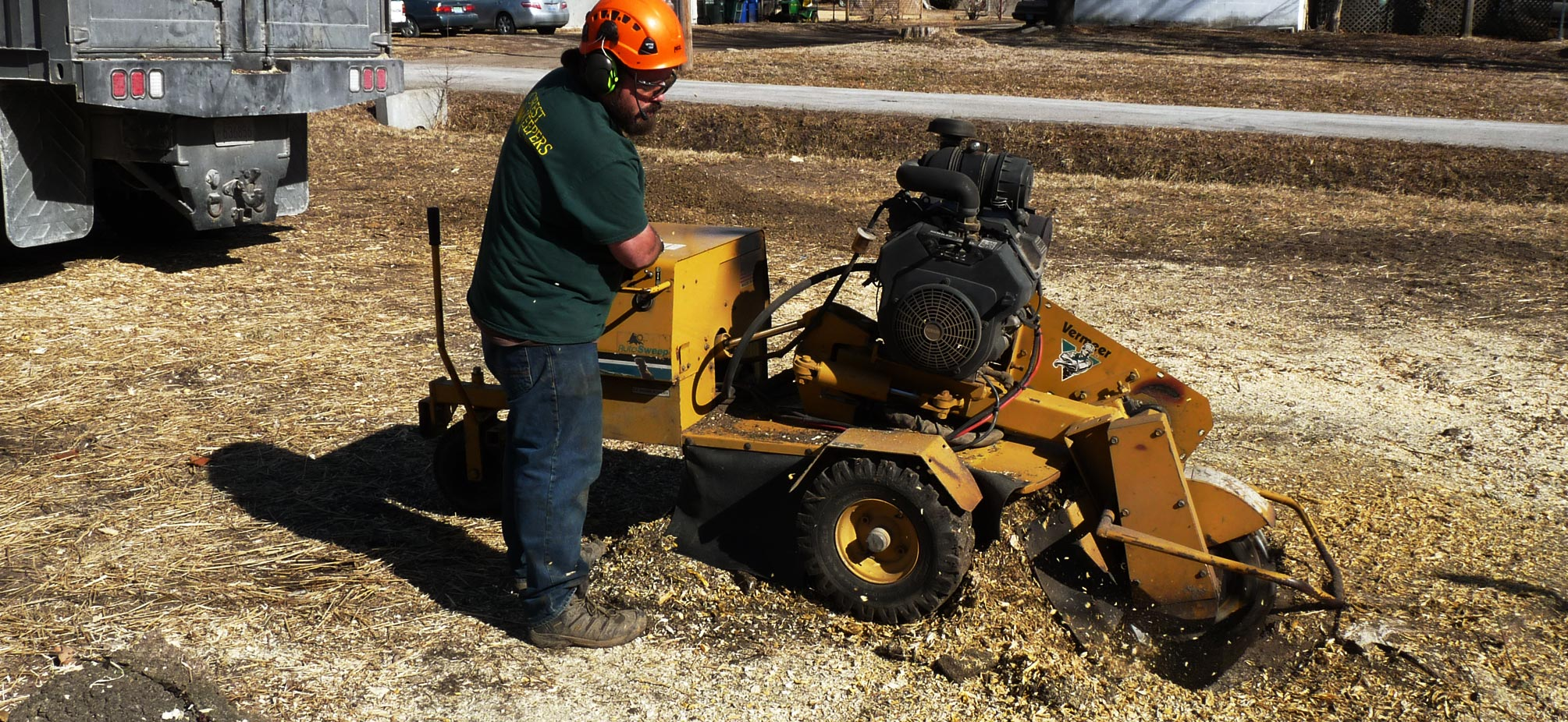 Stump grinding & root removal